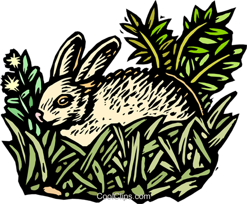 rabbit Royalty Free Vector Clip Art illustration anim2045