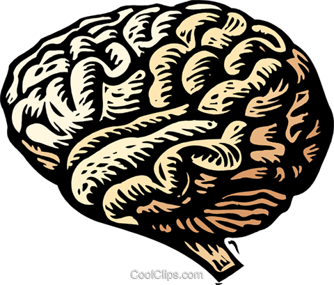 woodcut brain Royalty Free Vector Clip Art illustration medi0345