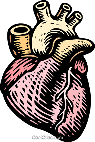 woodcut heart Royalty Free Vector Clip Art illustration medi0346