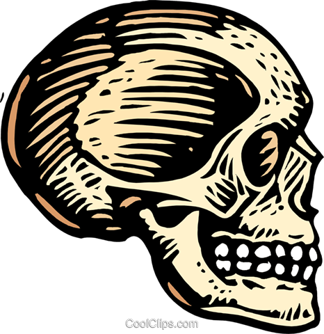 woodcut skull Royalty Free Vector Clip Art illustration medi0347