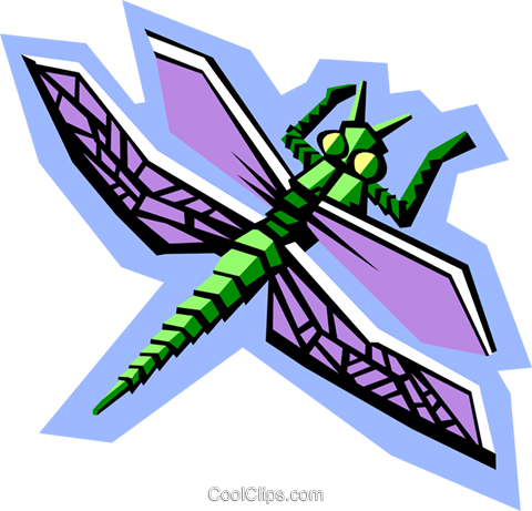 stylized dragonfly Royalty Free Vector Clip Art illustration anim2078