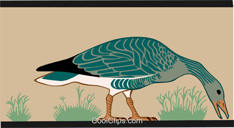 goose Royalty Free Vector Clip Art illustration anim2158