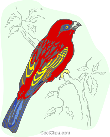 bird Royalty Free Vector Clip Art illustration anim2162