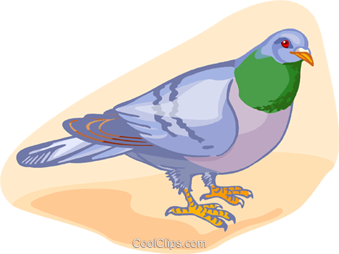 bird Royalty Free Vector Clip Art illustration anim2165