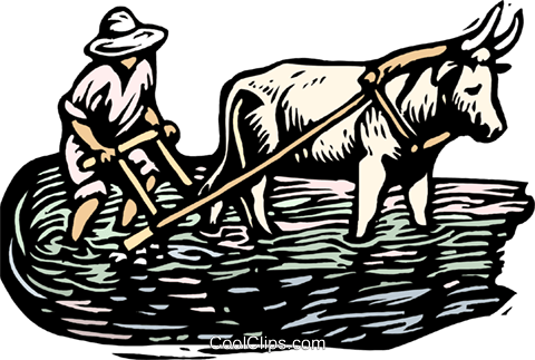 Woodcut man working with ox Royalty Free Vector Clip Art illustration indu0992