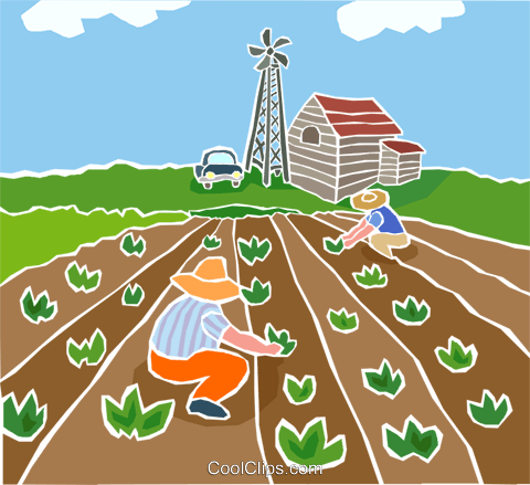 Farmers planting crops Royalty Free Vector Clip Art illustration indu1044