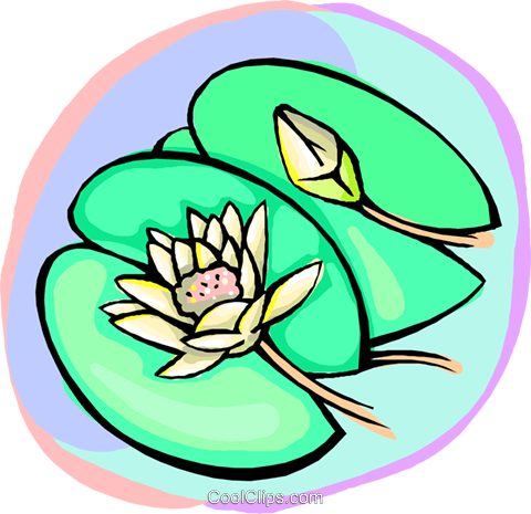 Lily pads Royalty Free Vector Clip Art illustration natu0997