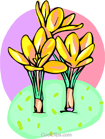 Crocus's Royalty Free Vector Clip Art illustration natu1003