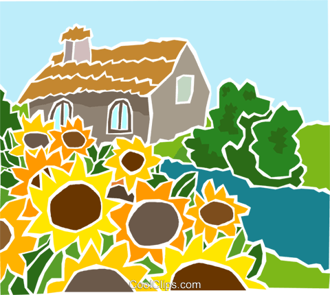 sunflowers with a country cottage Royalty Free Vector Clip Art illustration natu1006