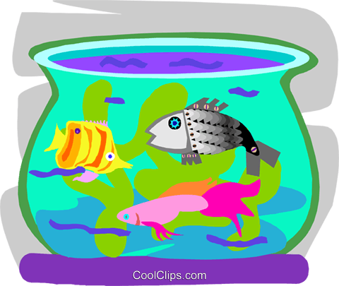 Tropical fish in fish bowl Royalty Free Vector Clip Art illustration anim2198