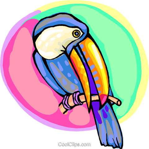 Toucan on a branch Royalty Free Vector Clip Art illustration anim2200