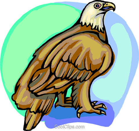 American eagle Royalty Free Vector Clip Art illustration anim2205