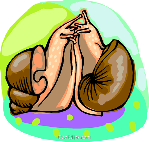snails Royalty Free Vector Clip Art illustration anim2208