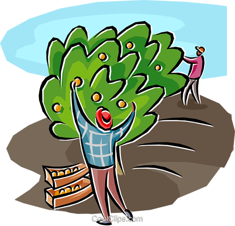 orchard workers Royalty Free Vector Clip Art illustration indu1160