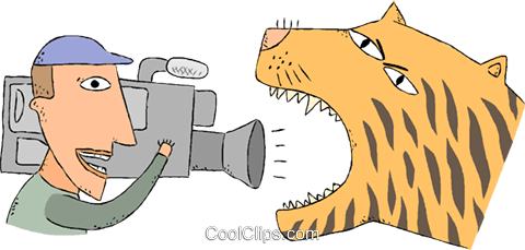 Cameraman filming tiger Royalty Free Vector Clip Art illustration vc001168
