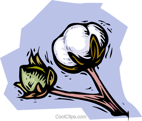 cotton plant Royalty Free Vector Clip Art illustration vc001508