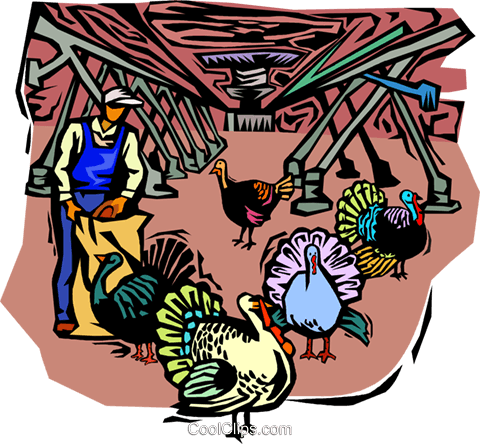 farmer feeding turkeys Royalty Free Vector Clip Art illustration vc001818
