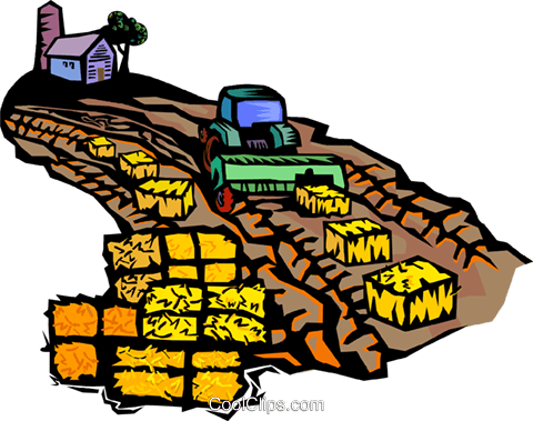 gathering the hay crop Royalty Free Vector Clip Art illustration vc001922