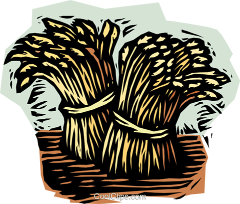 wheat sheaves Royalty Free Vector Clip Art illustration vc002025