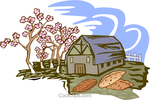 pecan farming Royalty Free Vector Clip Art illustration vc002183
