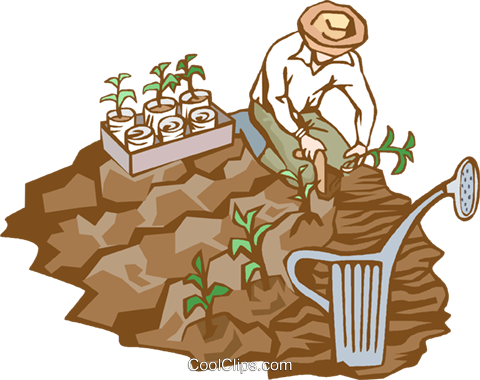 planting a crop Royalty Free Vector Clip Art illustration vc002361