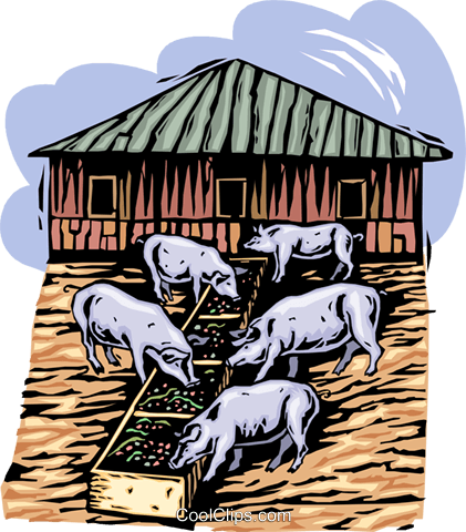 pigs at a trough; farming Royalty Free Vector Clip Art illustration vc002709