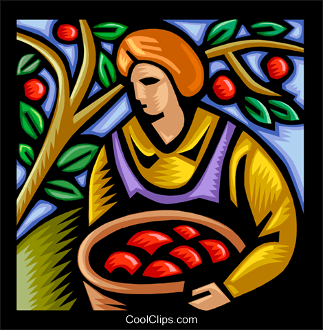 person picking apples Royalty Free Vector Clip Art illustration vc003645