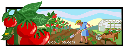 gardening, gardener Royalty Free Vector Clip Art illustration vc003697
