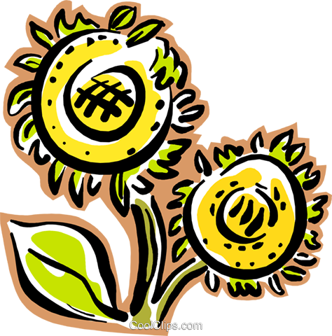 Sunflower plant Royalty Free Vector Clip Art illustration vc004307