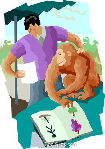 studying monkey behavior Royalty Free Vector Clip Art illustration vc004406