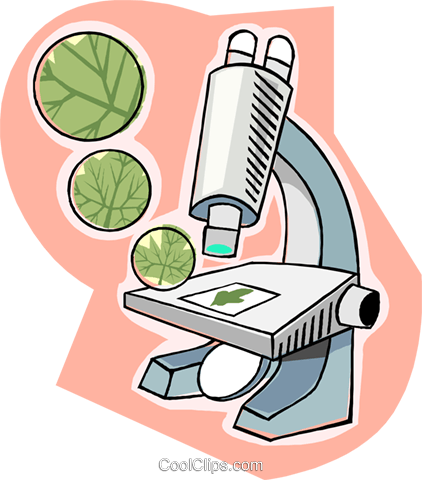 microscope  biology royalty free vector clip art microsoft clip art free microsoft clip art gallery