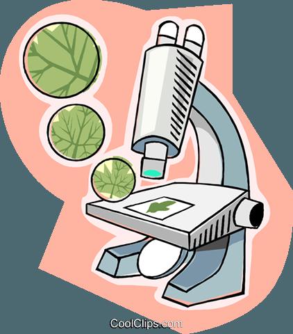 Clip Art Biology Slides