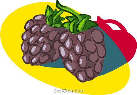 fruit Royalty Free Vector Clip Art illustration vc005579