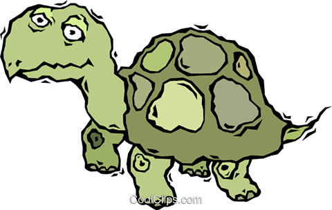 turtle, tortoise Royalty Free Vector Clip Art illustration vc006015