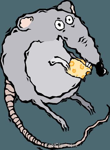 Schmutzige schwarze Ratte, Tier, schwarz png | PNGEgg