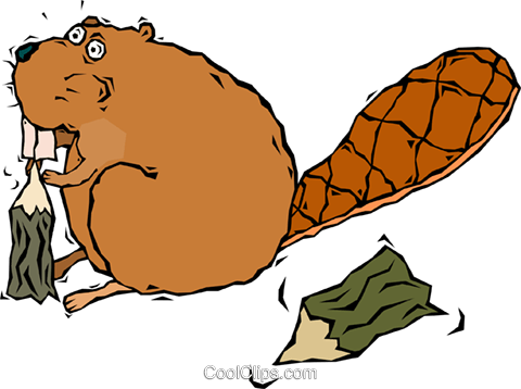 beaver, chewing on a tree Royalty Free Vector Clip Art illustration vc006455