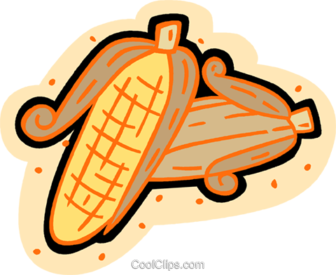 corn, maize Royalty Free Vector Clip Art illustration vc007185