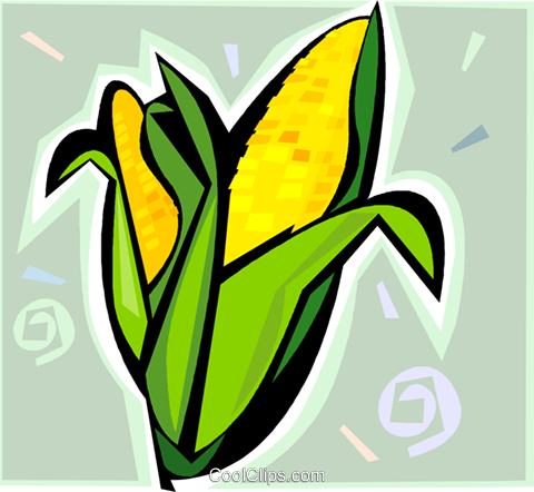cob of corn Royalty Free Vector Clip Art illustration vc009317