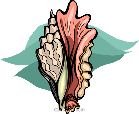 sea shell Royalty Free Vector Clip Art illustration vc010509