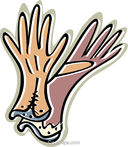 ladies gloves Royalty Free Vector Clip Art illustration vc010604