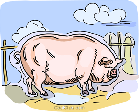 pig Royalty Free Vector Clip Art illustration vc010739