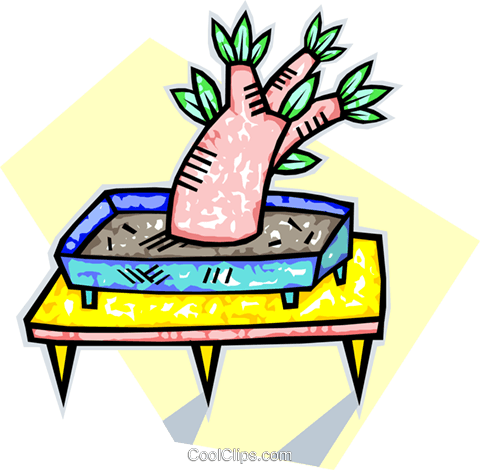 an exotic miniature tree Royalty Free Vector Clip Art illustration vc010754