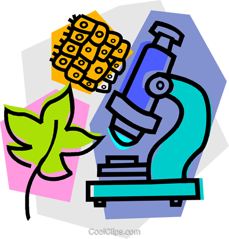 microscope with leaf Royalty Free Vector Clip Art illustration vc011078