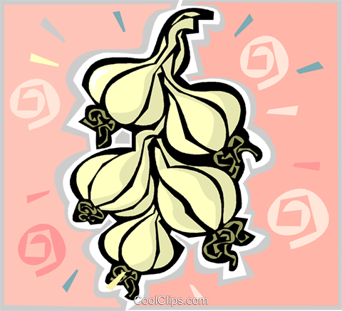 garlic Royalty Free Vector Clip Art illustration vc011792