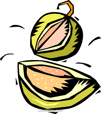melons Royalty Free Vector Clip Art illustration vc018201