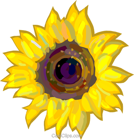 Sunflowers Royalty Free Vector Clip Art illustration vc024892