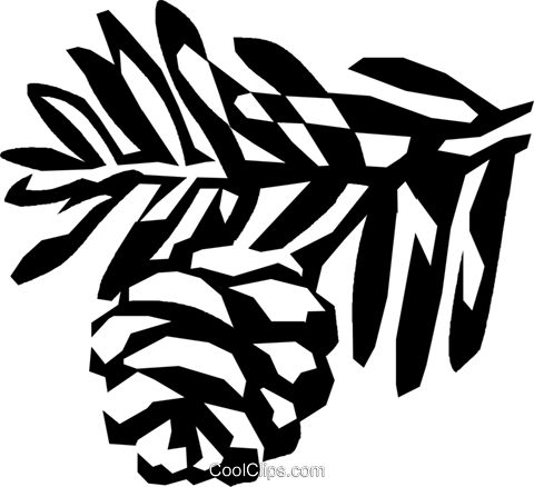 conifer Royalty Free Vector Clip Art illustration vc026114