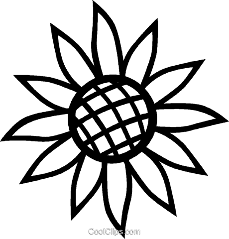 sunflower Royalty Free Vector Clip Art illustration vc027032