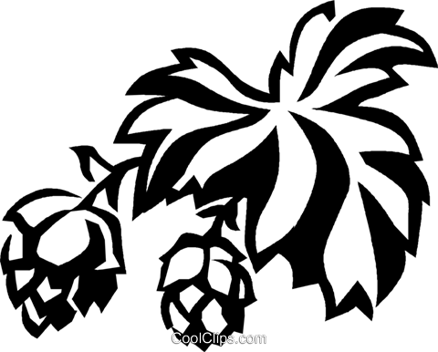 hops Royalty Free Vector Clip Art illustration vc027420