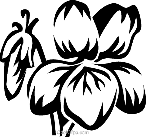 violet Royalty Free Vector Clip Art illustration vc027431